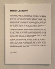 Mental Causation